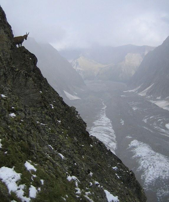 Mont Blanc: high up on the Aiguilles Grises
