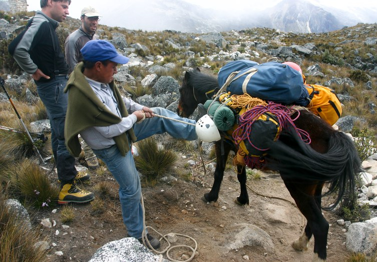 Pisco Climb: loading our luggage on the horse below Pisco base camp